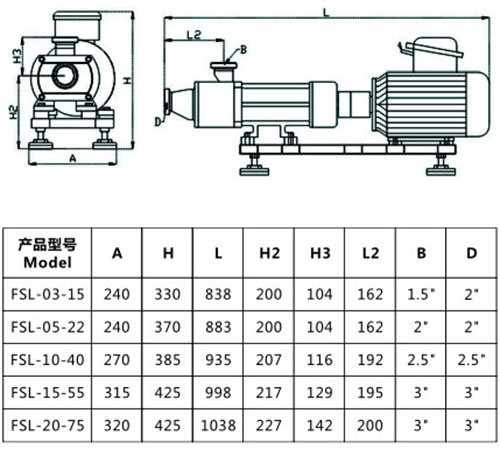 double screw pump mounting dimension