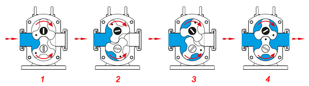 Rotary Lobe Pump Working Principle Image